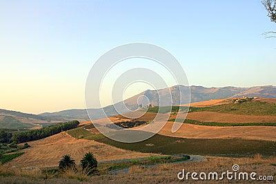 Burned fields in Sicily
