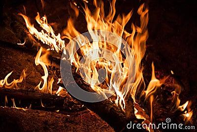 Burning bonfire night