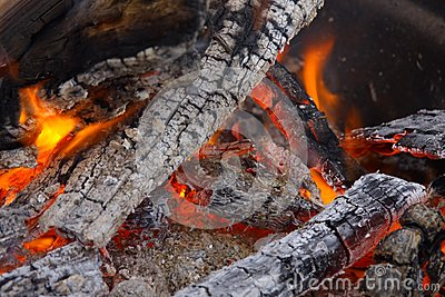 Burning Campfire with Coals