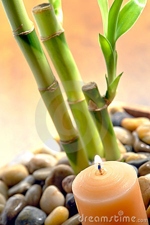 Burning Candle and Bamboo Stems for Meditation