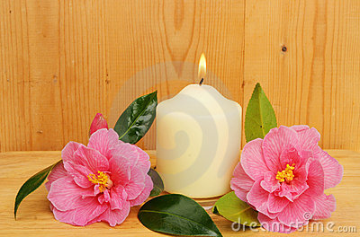 Burning candle and two camellia flowers