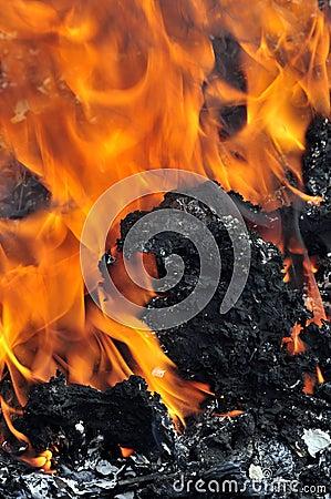 Burning coal flames