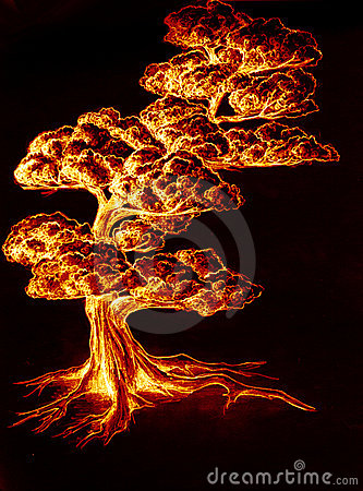Burning hot tree