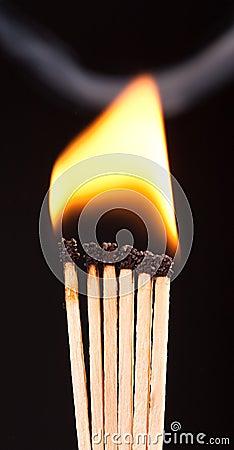 Burning matchs heads (macro)