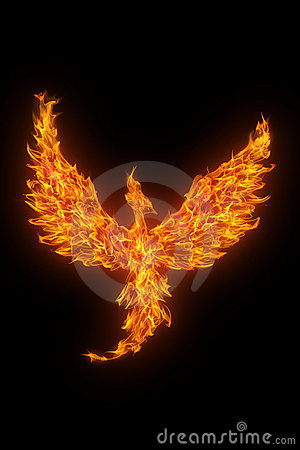 Free Burning Phoenix Isolated Over Black Royalty Free Stock Image - 7907226