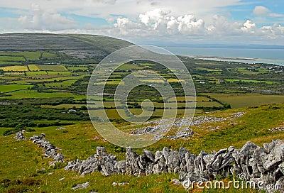 The Burren fields
