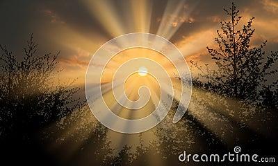 Bursting sun rays