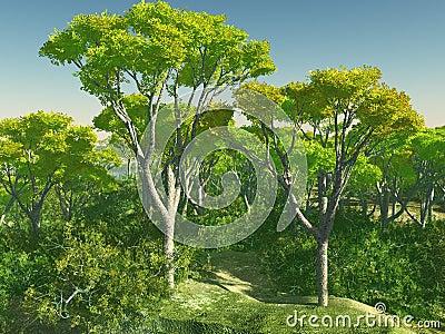 Bush bomen in het 3d teruggeven van australi stock illustratie afbeelding 91648790 - Bush architectuur ...