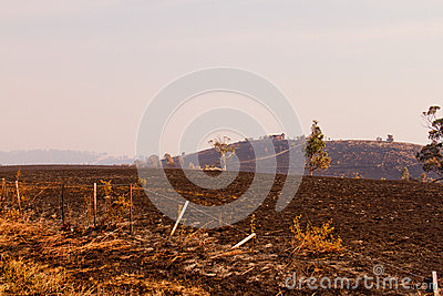 Bush Fire Tasmania Royalty Free Stock Images - Image: 28495039