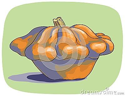 Bush pumpkin.