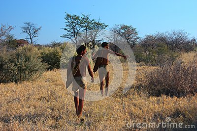 Bushman Editorial Stock Photo