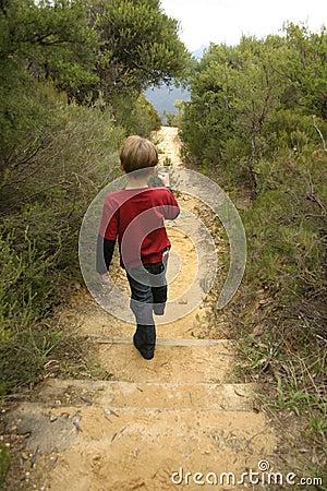 Free Bushwalking Royalty Free Stock Images - 208149