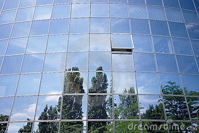 Business building reflections