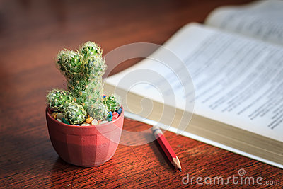 Business concept of cactus pencil and a book on wood background