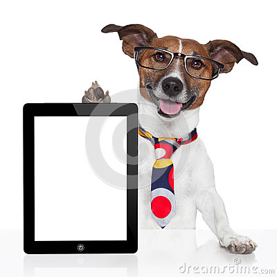 Free Business Dog Tablet Pc Ebook Royalty Free Stock Photo - 27391755