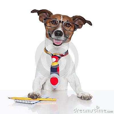 Free Business Dog Typewriter Stock Images - 26417544