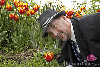 Business man face tulips