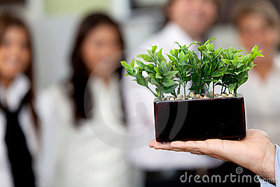 Business man holding a plant