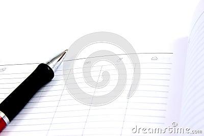 Business pocket planner and pen