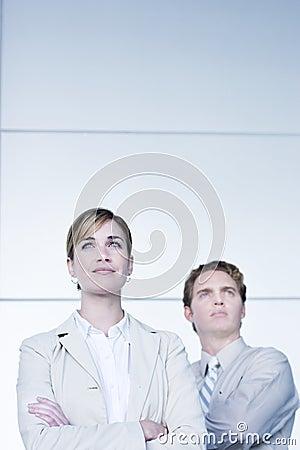 Free Business Success Stock Photo - 298660