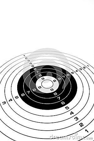 Business Target bullseye sucess