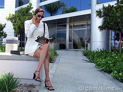 Business Woman 939