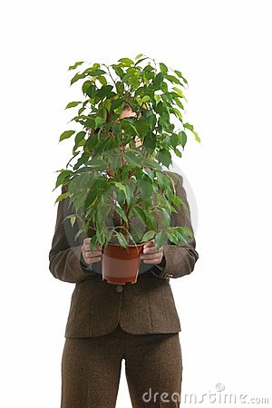 Business woman hiding behind plant - isolated