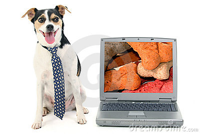 Businessdog and a Laptop Computer with Image of Dog Biscuits