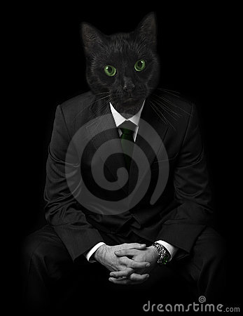 Businessman with black cats face.