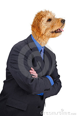 Businessman with crossed arms and dog head