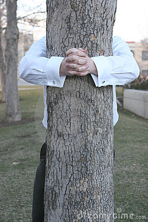Free Businessman Hugging Tree Royalty Free Stock Photos - 2406278