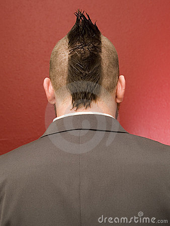 Businessman Mowhawk Head - Back Royalty Free Stock Photography - Image: 1733787