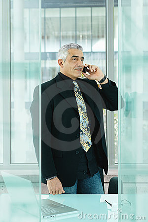 Businessman talking on mobile