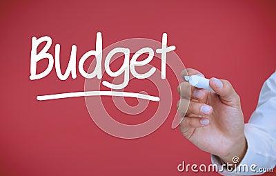 Businessman writing budget