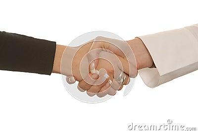 Businesswoman s hand shake