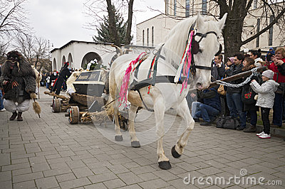 Buso s horse vehicle with coffin Editorial Photography
