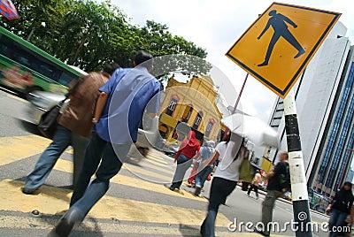Busy crossing
