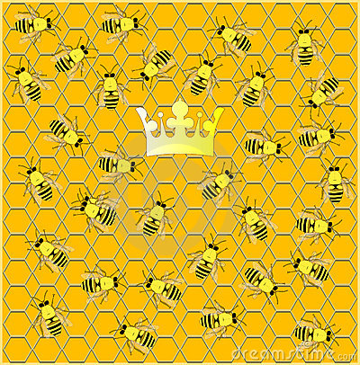 Busy hive.