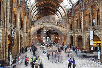 Busy morning at the Natural History Museum Editorial Stock Image