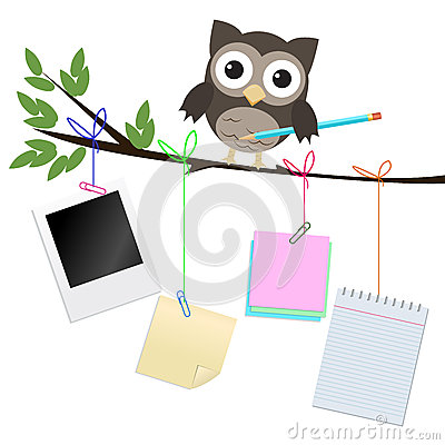 Busy owl isolated on white