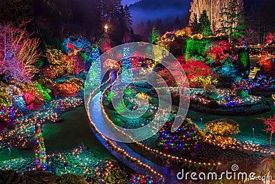 Lights And Sounds Of Christmas
