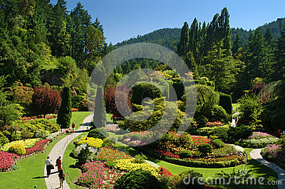 Butchart Gardens Victoria BC Editorial Stock Photo Image 32831468