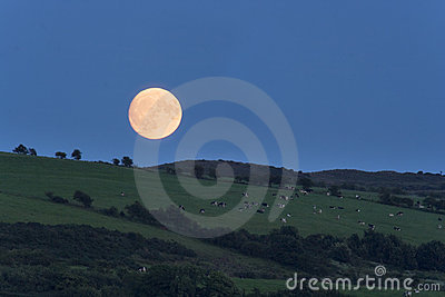 Bute moonrise