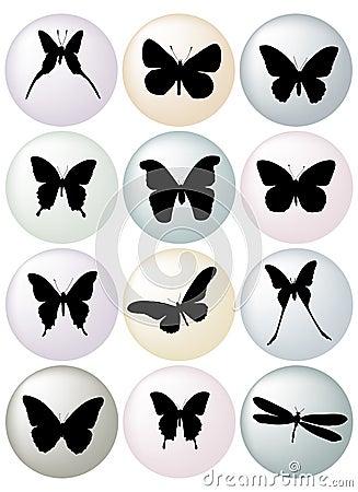 Free Butterflies Stock Photos - 1953653