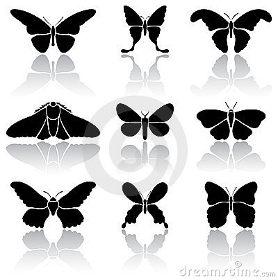 Free Butterflies Royalty Free Stock Photography - 23404077