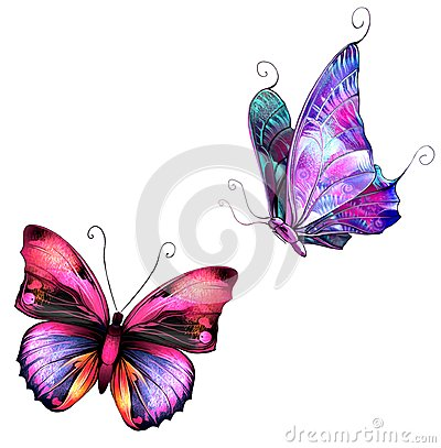 Free Butterflies Stock Photos - 29738513