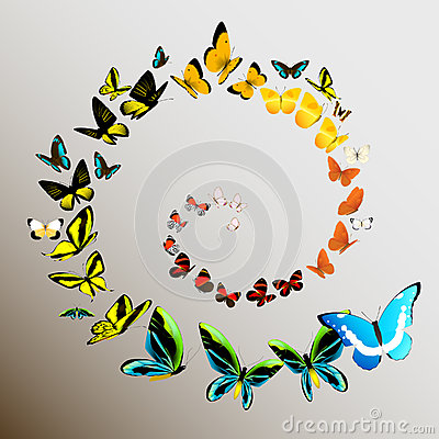 Free Butterflies Royalty Free Stock Photos - 35372438