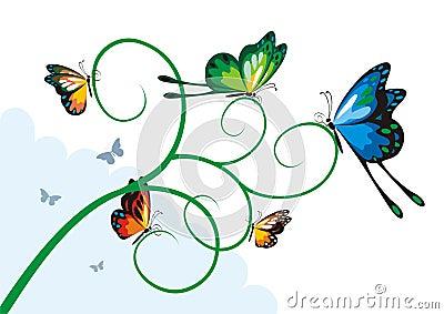 Butterflies on a branch