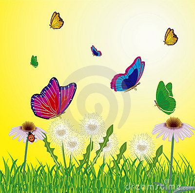 Free Butterflies Flying On Year Meadow Stock Photo - 16412150