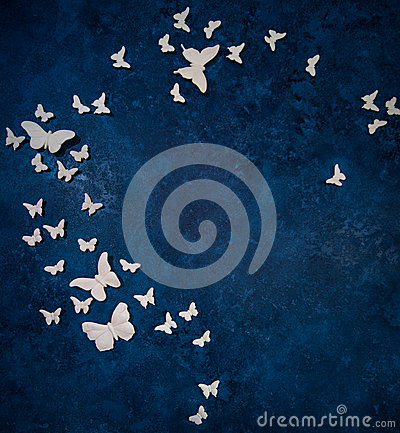 Butterflies over dark blue background